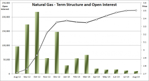 Natural Gas Term Structure